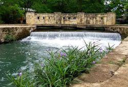 5 Best Bush Walks in San Antonio, TX