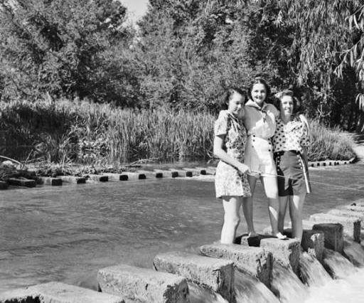 Vintage Brackenridge Park
